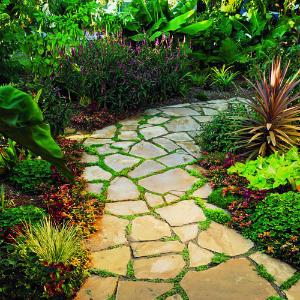 Path-flagstone-m-m