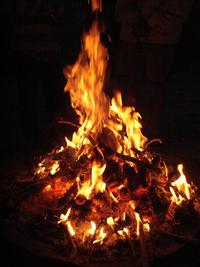 200px-Campfire_Pinecone
