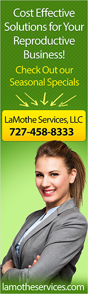 LaMothe Services Banner 2016