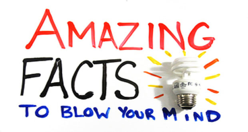 11Amazing-Facts-About